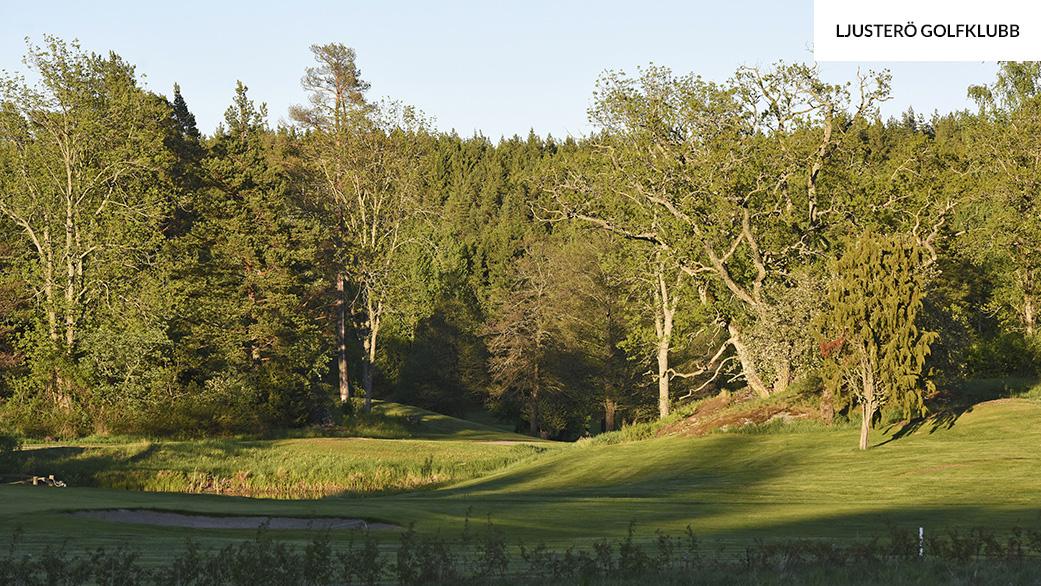 Ljusterö-golfklubb